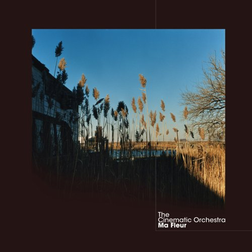 "cinematic orchestra ""to build a home"""
